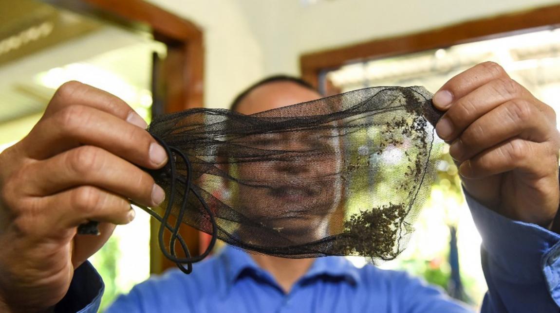 ফিলিপাইনে ডেঙ্গু আক্রান্ত আড়াই লাখ, সহস্রাধিক প্রাণহানি