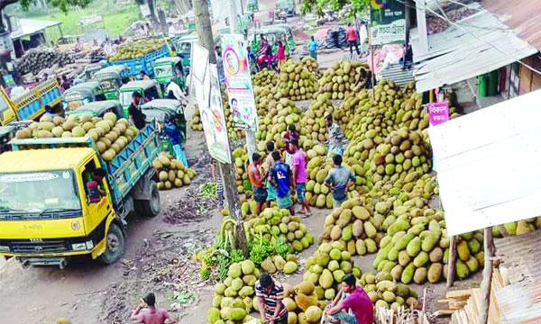 মৌসুমি ফলের বিকিকিনিতে জমজমাট করেরহাট বাজার
